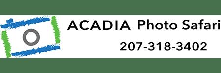 AcadiaPhotoSafari